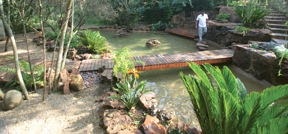 naturescape gardens landscapers african nature scape landscaping services provide following